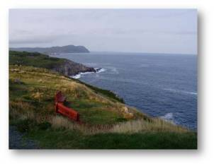 Newfoundland2